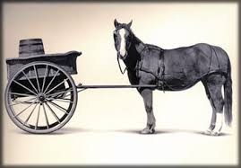 Government places the economic cart before the horse